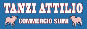 Tanzi Attilio